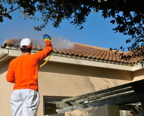 Eco-Friendly Roof Cleaning and Pressure Washing