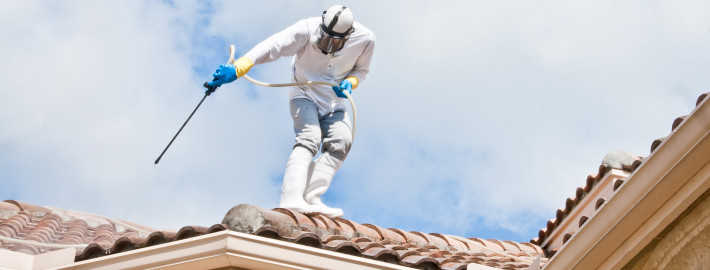 Clean Roof Experts