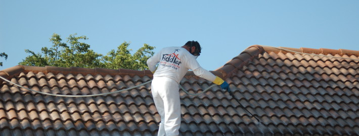 Fall Is Here! Get Your Roof Cleaned Once and For All!