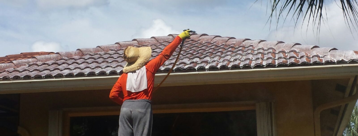 5 ways to get the most out of your roof cleaning company